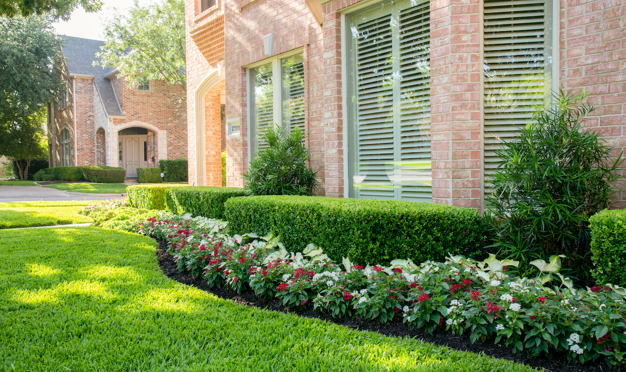 Milton Lawn - Landscaping design & ideas by Lawns of Dallas